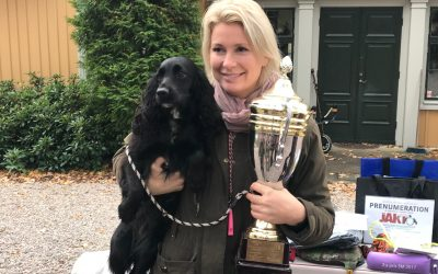 Interview with the winner of the Spaniel Championship 2017: Anna Lindholm