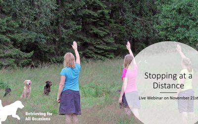 Webinar: Stopping at a Distance